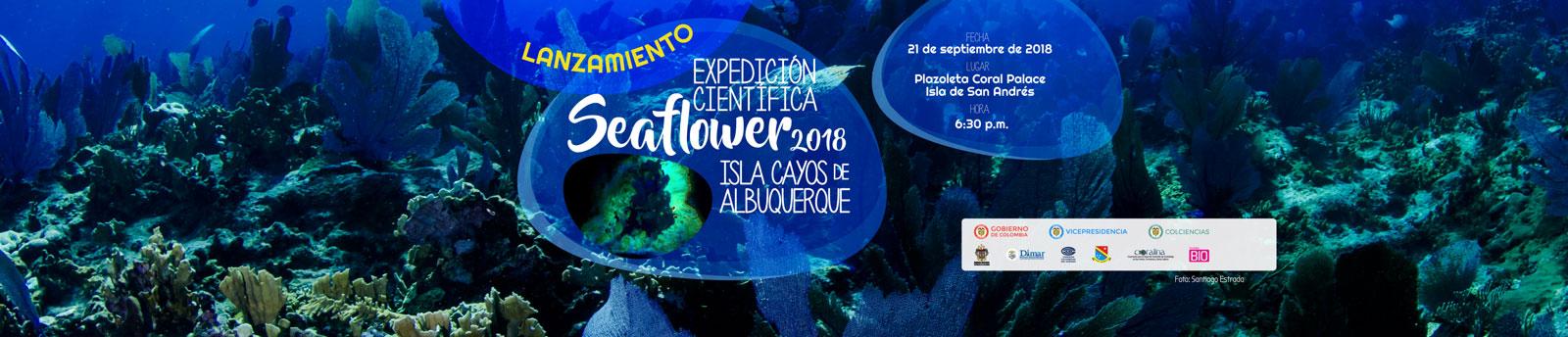 Expedición Científica Seaflower 2018 rumbo a la Isla Cayos de Albuquerque